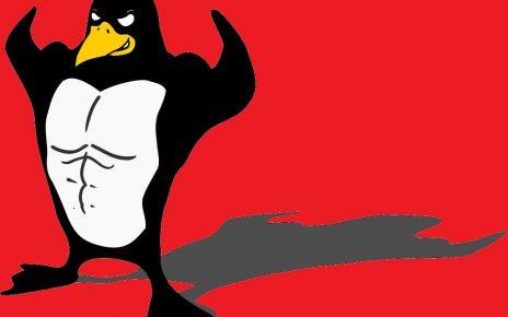 linux su ambienti desktop è in difficoltà