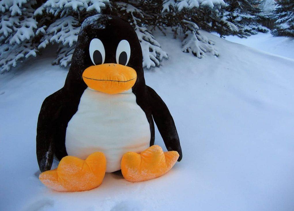 programmi per linux